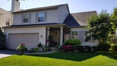 Blacklick Single Family Home For Sale: 8241 Olympus Lane