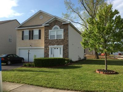 Blacklick Single Family Home For Sale: 8726 Greylag Street