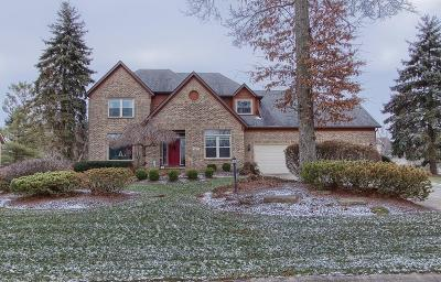Pickerington Single Family Home For Sale: 8823 Chateau Drive