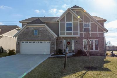 Grove City Single Family Home For Sale: 5048 Giovanni Court