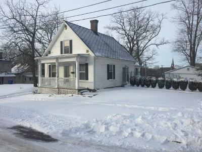 Delaware Single Family Home For Sale: 17 Lewis Street