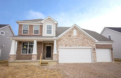 Delaware Single Family Home For Sale: 555 White Fawn Run