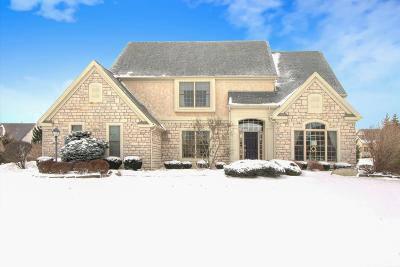 Westerville Single Family Home For Sale: 7562 Wild Mint Court