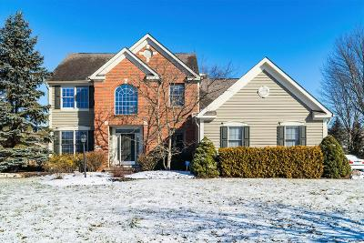 Hilliard Single Family Home For Sale: 3450 Heritage Oaks Drive