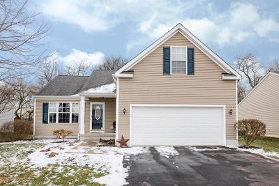 Circleville Single Family Home For Sale: 345 Sycamore Drive