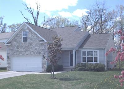 Grove City Single Family Home For Sale: 1865 Bay Port Drive