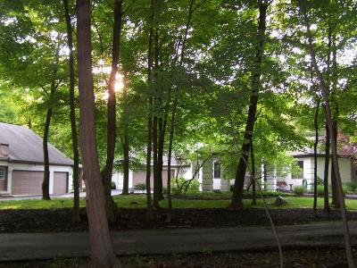 Blacklick Single Family Home For Sale: 7991 Havens Road