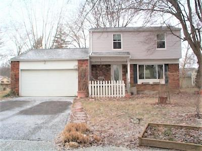 Reynoldsburg Single Family Home For Sale: 655 Falls Place