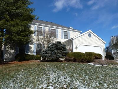 Westerville Single Family Home For Sale: 1080 Carousel Court