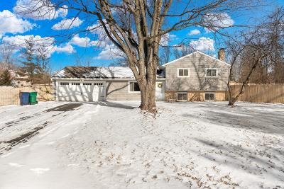 Pataskala Single Family Home For Sale: 84 Middle Ground Road SW