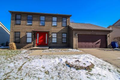 Delaware Single Family Home For Sale: 846 Executive Boulevard
