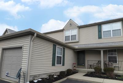 Hilliard Condo For Sale: 5672 Mango Lane #104D