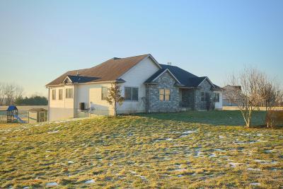 Lancaster Single Family Home For Sale: 3172 Sarah Drive NE