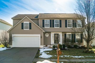 Blacklick Single Family Home For Sale: 7847 Blacklick View Drive