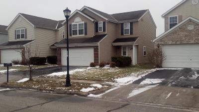 Columbus Single Family Home For Sale: 3673 Parker Knoll Lane