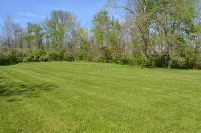 Pickerington Residential Lots & Land For Sale: 215 Hill Road S