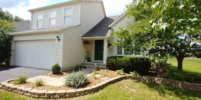 Powell Single Family Home For Sale: 205 Winter Hill Place