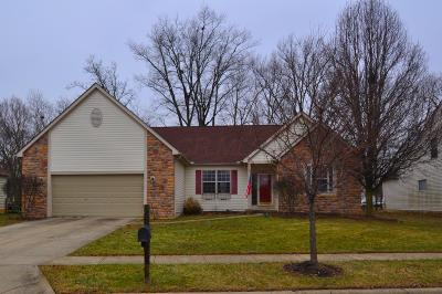Groveport Single Family Home For Sale: 4807 Golden Grove Drive
