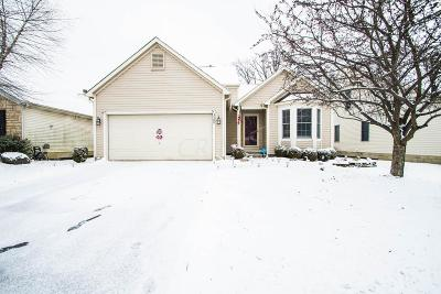 Grove City Single Family Home For Sale: 3480 Brook Spring Drive