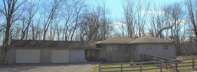 Plain City Single Family Home For Sale: 8107 Oh-736