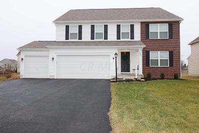 Delaware Single Family Home For Sale: 405 Parkville Court