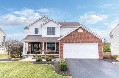 Hilliard Single Family Home For Sale: 4389 Leppert Road