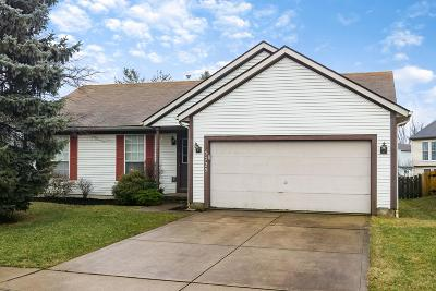 Hilliard Single Family Home For Sale: 5725 Saucony Drive