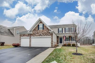 Mount Sterling Single Family Home For Sale: 484 Wingate Place
