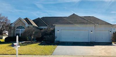 Grove City OH Single Family Home For Sale: $315,000