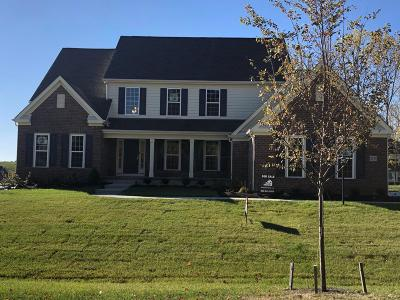 Delaware Single Family Home For Sale: 2175 Shale Run Drive
