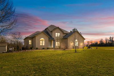 Fairfield County Single Family Home For Sale: 8831 Castleview Place