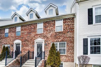 Westerville Condo For Sale: 1122 Green Knoll Drive