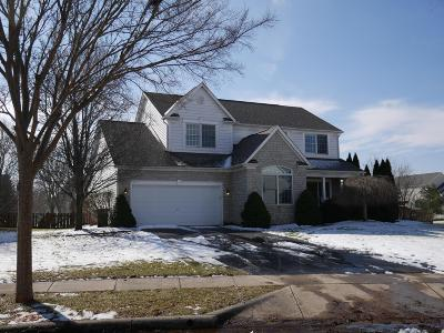 Hilliard Single Family Home For Sale: 3125 Goodman Meadows Drive