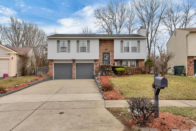Columbus Single Family Home For Sale: 4206 Berryfield Drive