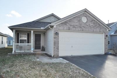 Grove City Single Family Home For Sale: 3901 Rosette Drive