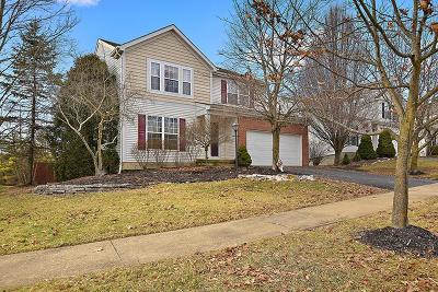 Delaware Single Family Home For Sale: 21 Lantern Chase Drive