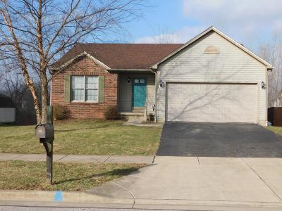 Lancaster Single Family Home For Sale: 1835 Far View Place