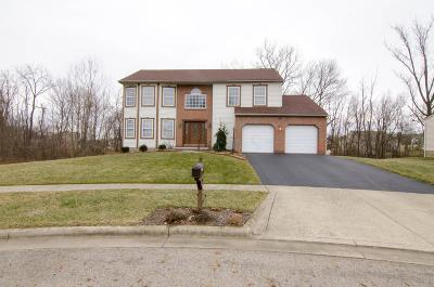 Etna Single Family Home For Sale: 120 Spring Brook Court