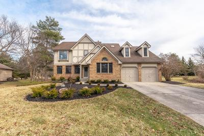 Dublin Single Family Home For Sale: 8950 Locherbie Court