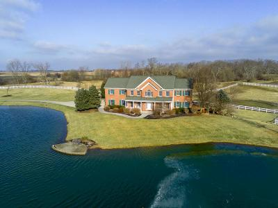 Franklin County, Delaware County, Fairfield County, Hocking County, Licking County, Madison County, Morrow County, Perry County, Pickaway County, Union County Single Family Home For Sale: 4550 Big Plain Circleville Road