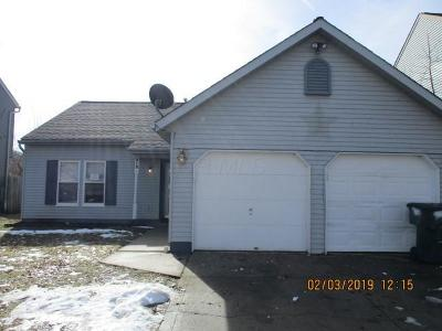 Franklin County, Delaware County, Fairfield County, Hocking County, Licking County, Madison County, Morrow County, Perry County, Pickaway County, Union County Single Family Home For Sale: 915 Cherry Bud Drive