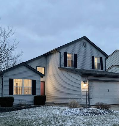 Franklin County, Delaware County, Fairfield County, Hocking County, Licking County, Madison County, Morrow County, Perry County, Pickaway County, Union County Single Family Home For Sale: 3165 Heather Meadow Place
