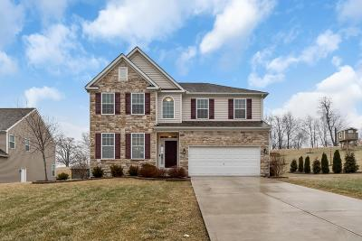 Franklin County, Delaware County, Fairfield County, Hocking County, Licking County, Madison County, Morrow County, Perry County, Pickaway County, Union County Single Family Home For Sale: 236 Park Ridge Lane