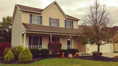 Franklin County, Delaware County, Fairfield County, Hocking County, Licking County, Madison County, Morrow County, Perry County, Pickaway County, Union County Single Family Home For Sale: 259 Clark Drive
