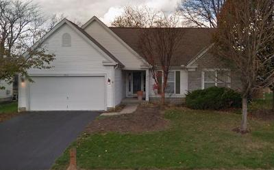 Columbus Single Family Home For Sale: 5892 Luccis Court