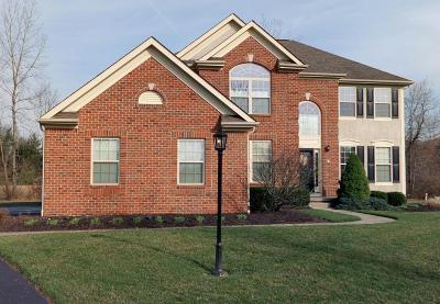 New Albany Single Family Home For Sale: 2881 Swisher Creek Crossing Court