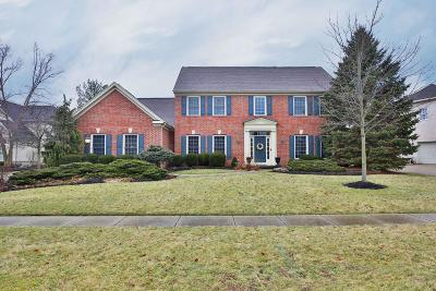 Westerville Single Family Home For Sale: 7730 Marsh Blue Court