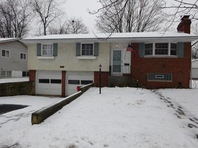 Grove City Single Family Home For Sale: 3891 Monterey Drive