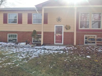 Licking County Single Family Home For Sale: 167 Parana Drive