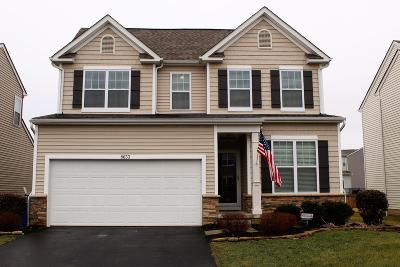 Blacklick Single Family Home For Sale: 8633 Aconite Drive